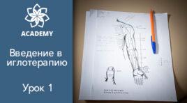 Введение в иглотерапию. Обучение рефлексотерапии.